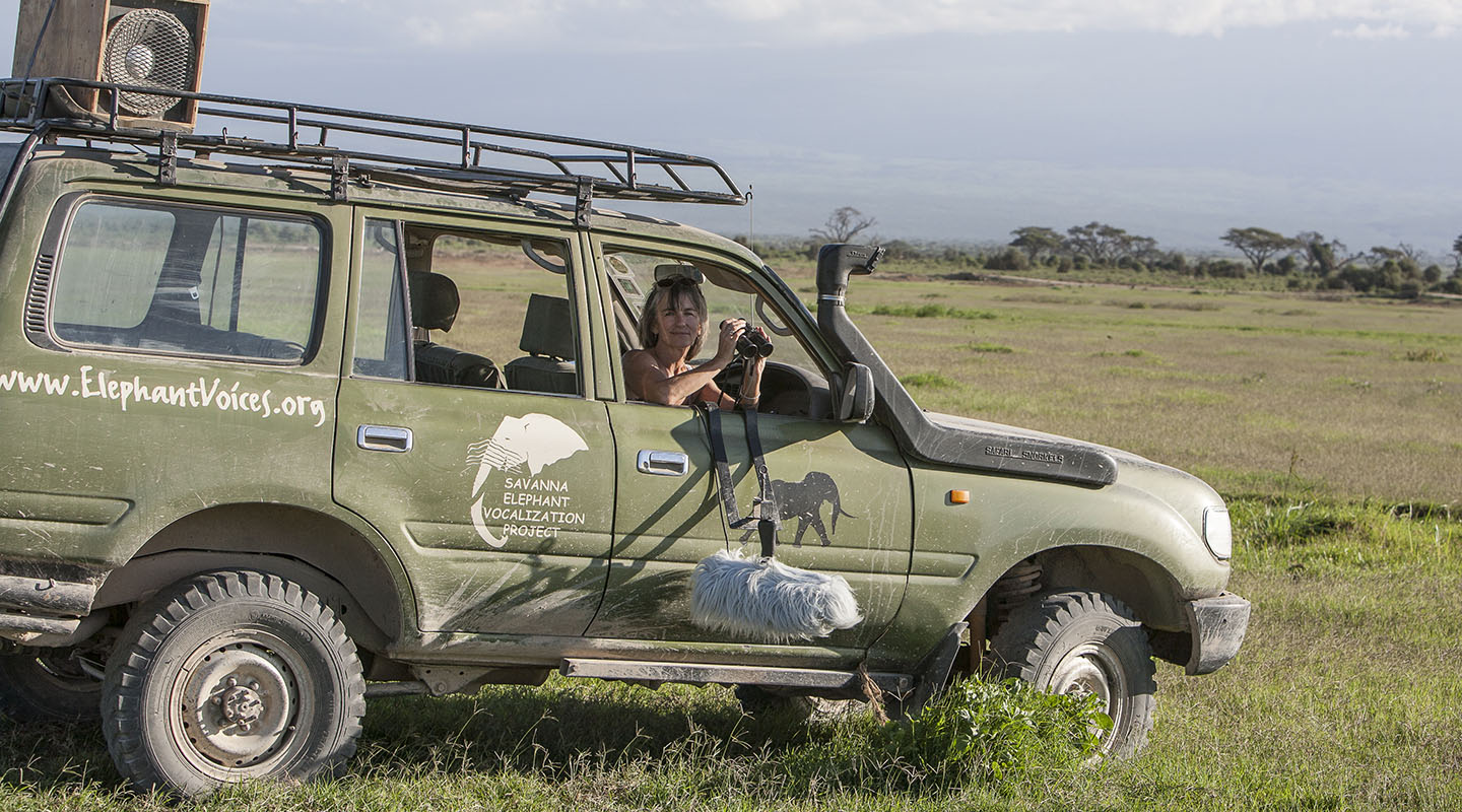 Poole prepares to record elephants and conduct playback experiments in Amboseli National Park. PETTER GRANLI, 2008